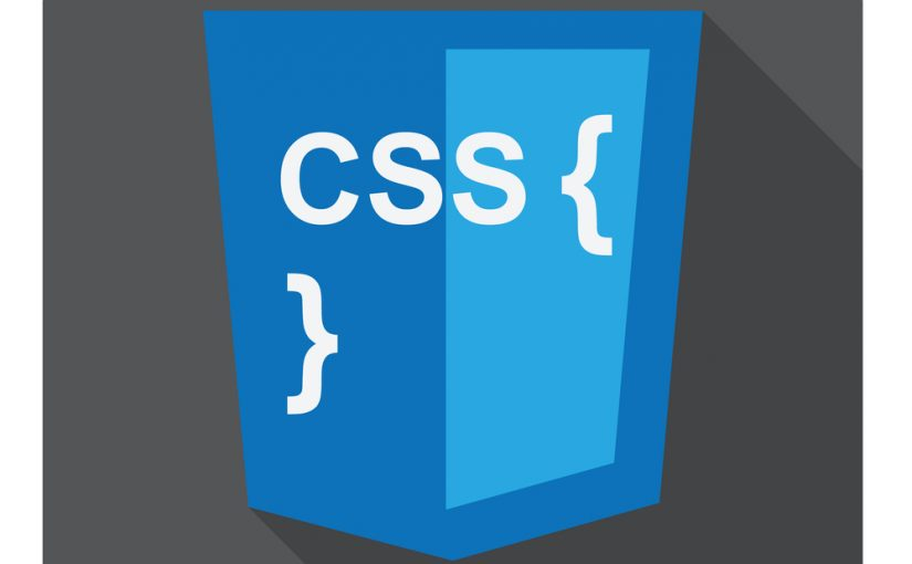 vector illustration of blue shield with css style and curves on the screen, isolated web site development icon on white background